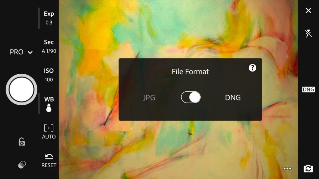 Adobe Lightroom Mobile and DNG format