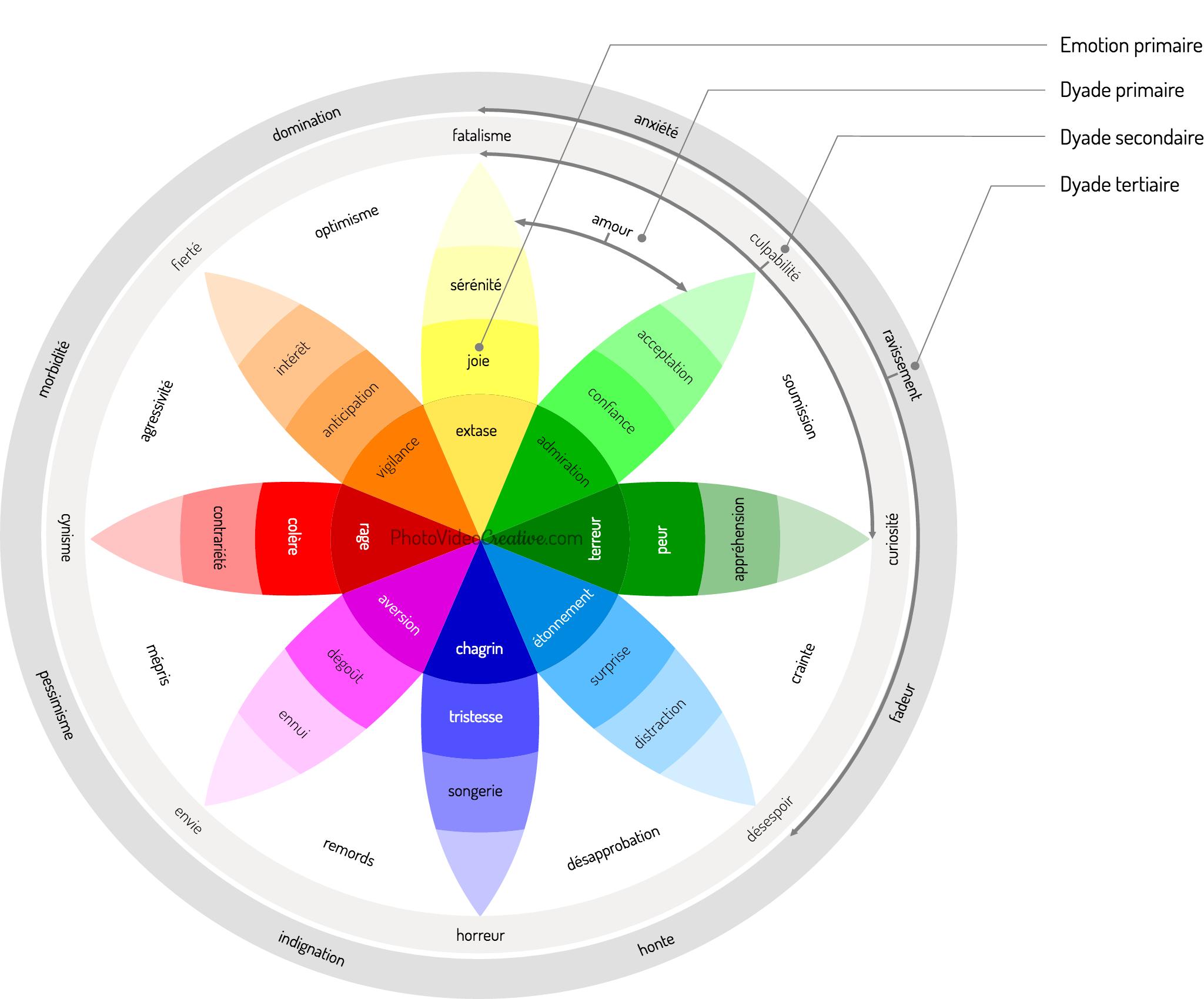 La roue des émotions de Plutchik