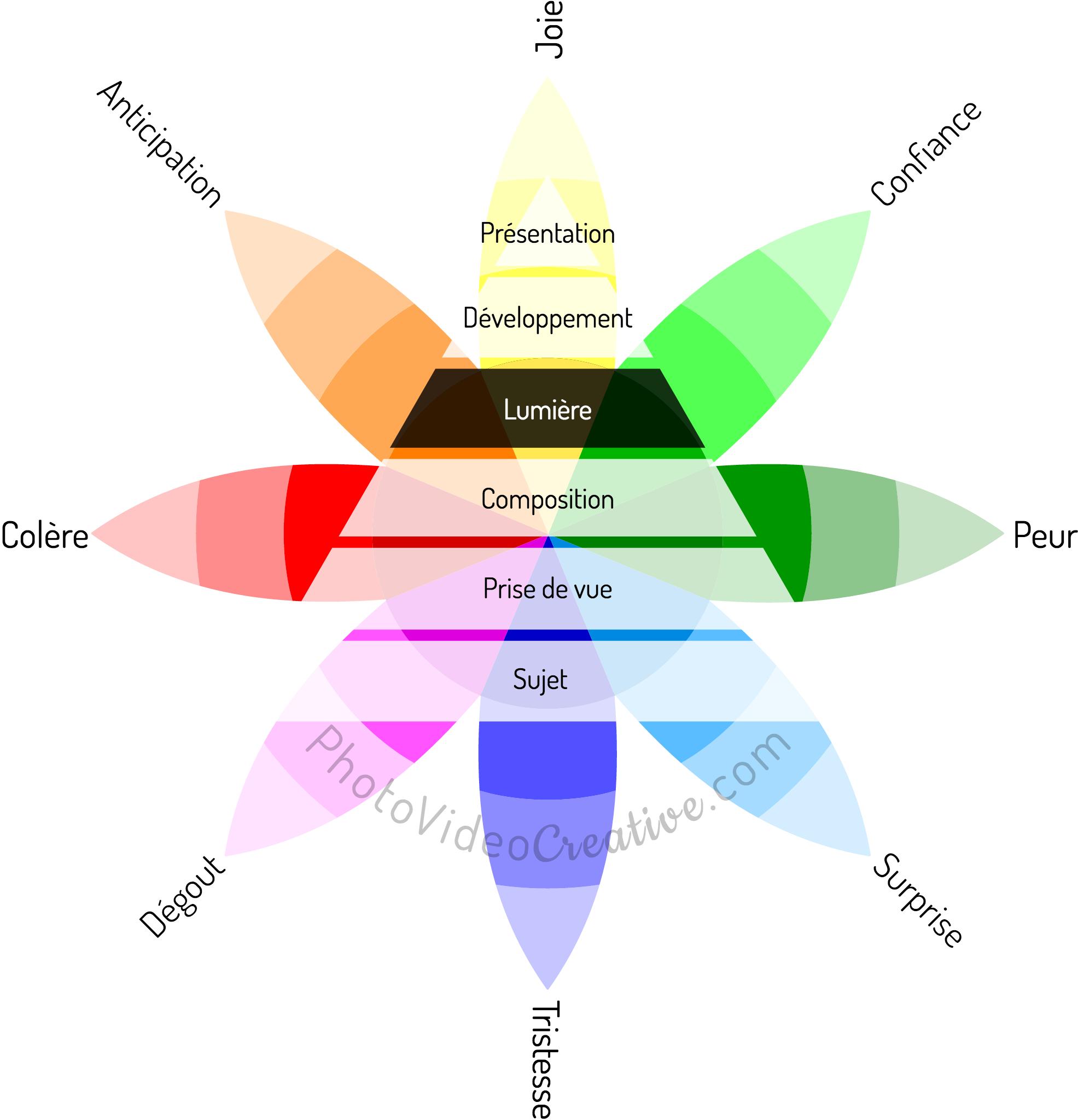 La lumière : le 4e niveau parmi les 6 de techniques photographiques pour capturer et partager ses émotions