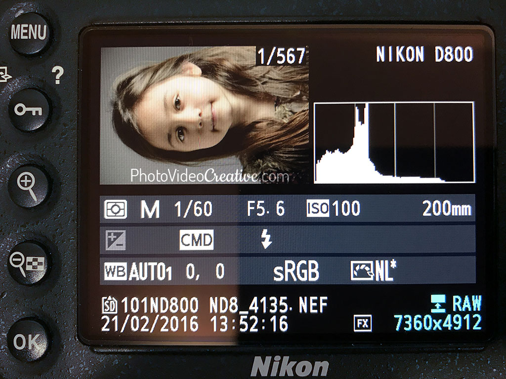 Histogram with balanced tonality at photo shooting