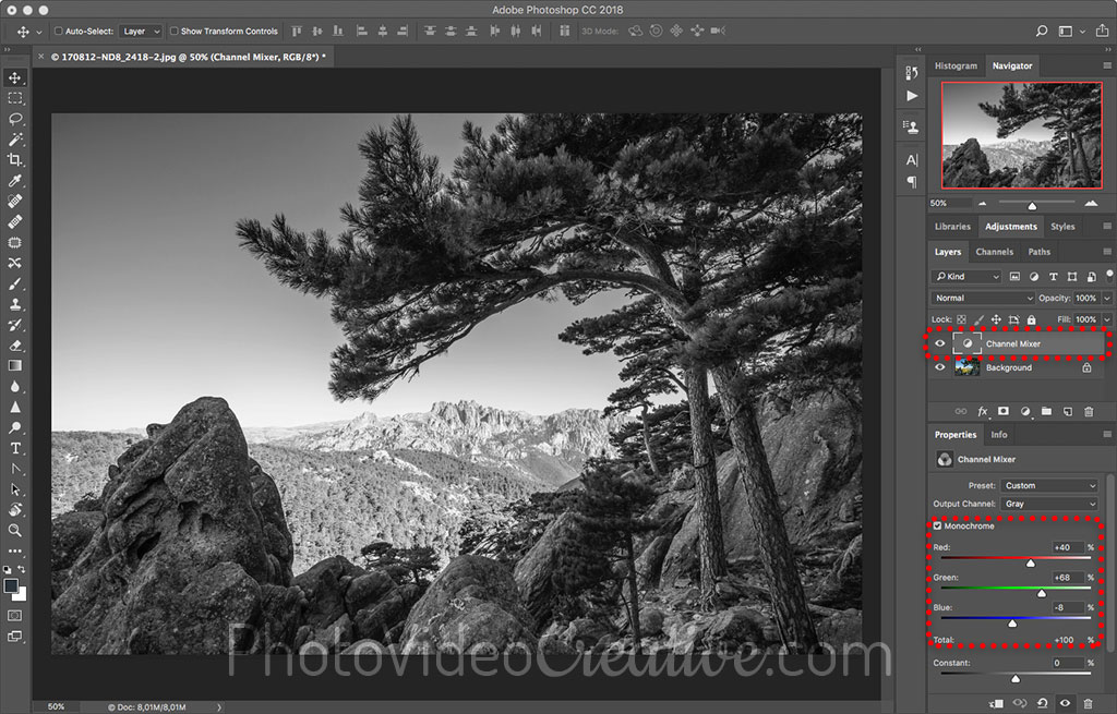 Black and white conversion in Adobe Photoshop with the channel mixer layer