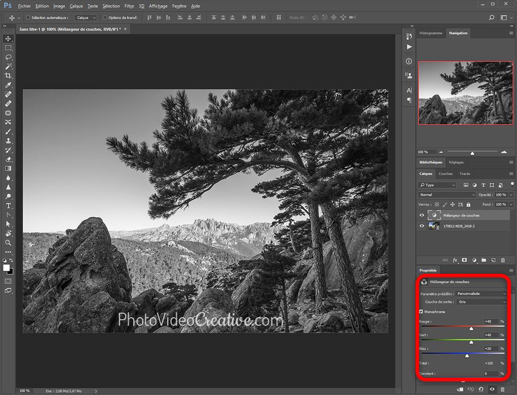 Conversion en noir et blanc avec le mélangeur de couche RVB dans Adobe Photoshop