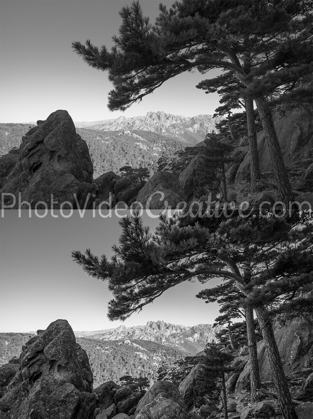 Photo noir et blanc avec et sans micro-contraste/clarté